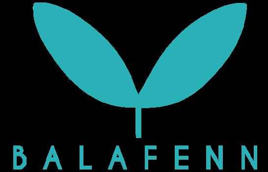 Création d'un site internet pour notre client Balafenn