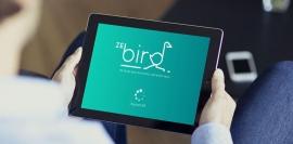 Création d'un logo pour l'application ZeBird - My Little Com', agence de communication à Brest